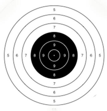 photo relating to Printable Air Rifle Targets titled Countrywide Recreation AIR RIFLE CMP in the direction of Perform NMAR